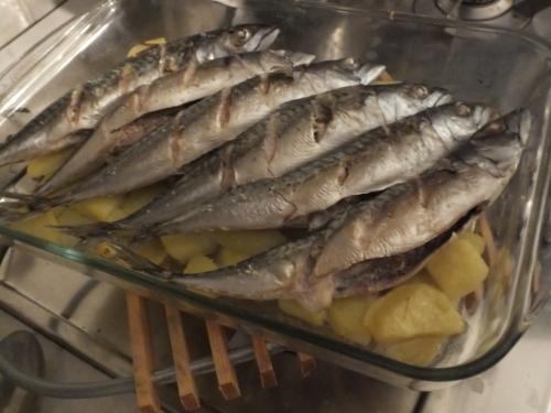 sgombri, patate, pesce, ricette di pesce